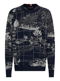 Concept Graphic Sweater
