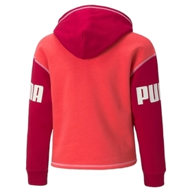 "Hoodie ""Puma Power"""